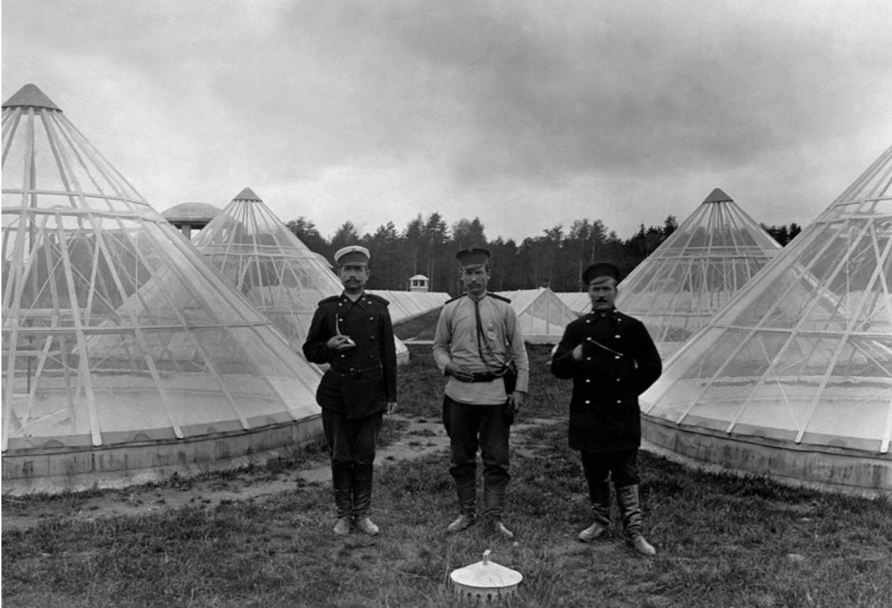 1907. На крыше фабрики между фонарями естественного освещения