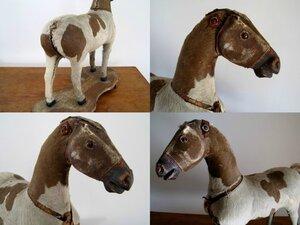 статья про лошадок 1