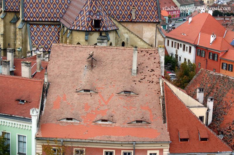2016-10-17 Sibiu_(105).JPG