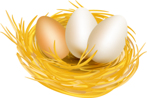 nests with eggs