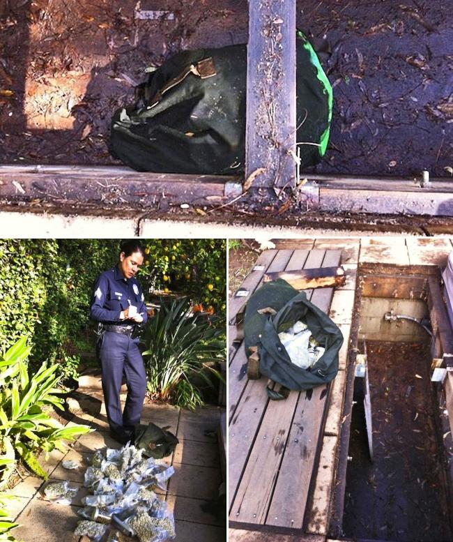 © documentingreality  Вдекабре 2012 года Мак Рид (Mack Reed), проживающий вЛос-Анджелесе, ре