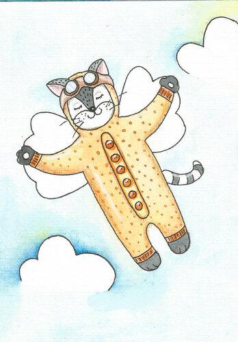 cat fly.jpg