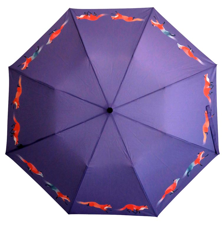 Images © Pluvio Umbrella / source