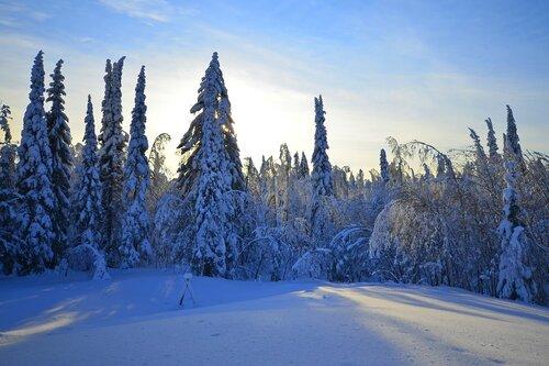 Зима в Белогорье.