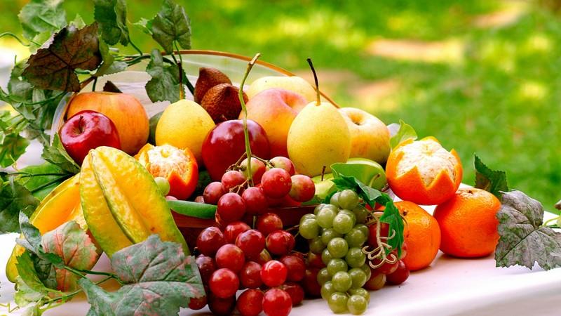 Способы сохранить продукты свежими