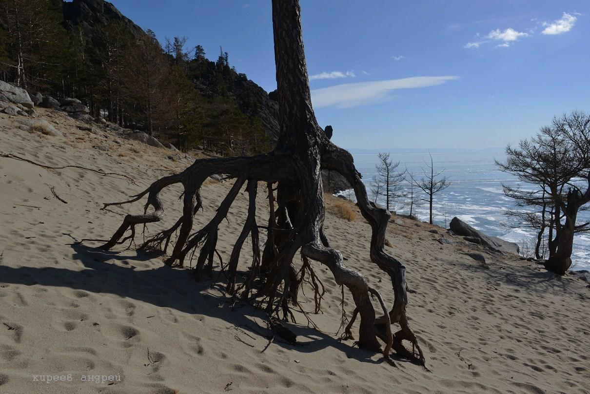 Бухта песчаная.