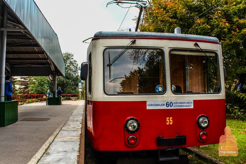 stanciya-zubchtogo-tramvaya-v-budapeshte.jpg