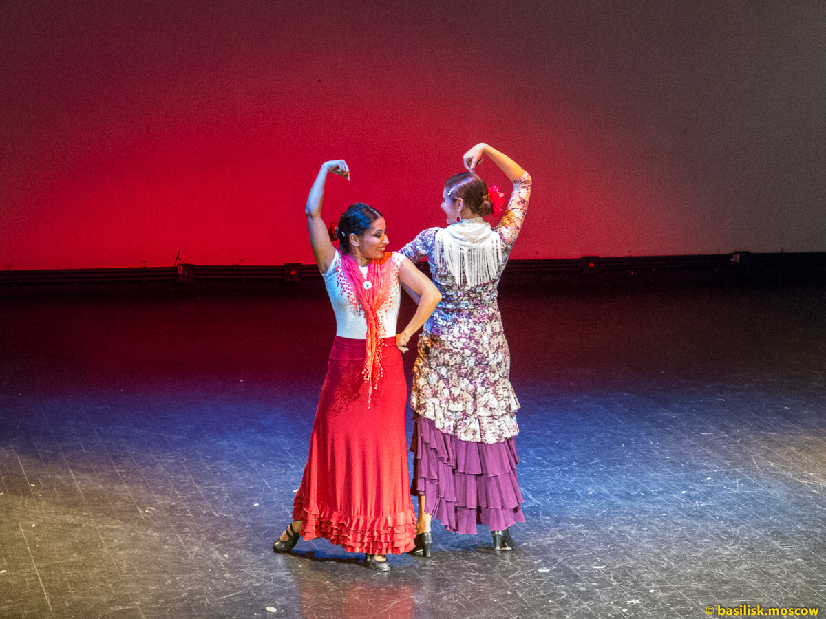 Ночь искусств. Проект Arte Vivo Flamenco. 3 ноября 2015.