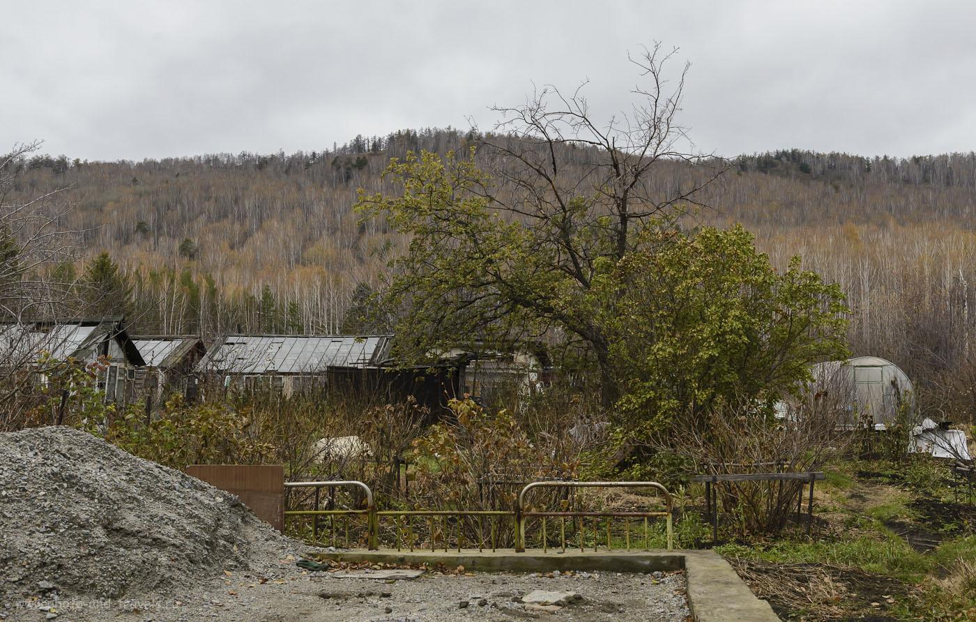 Фотография 27. Сады в окрестностях Вишневогорска. 1/60, -1.0, 8.0, 640, 40.