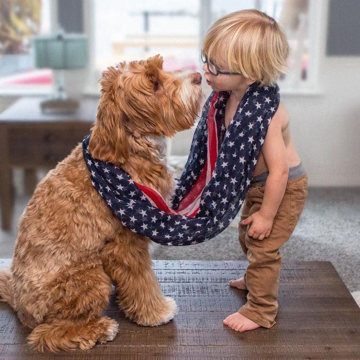 Малыш и его лохматый друг