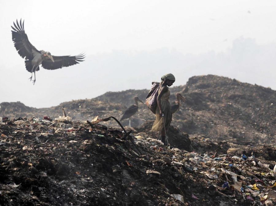 22. Женщина на свалке мусора на окраине города Гувахати.