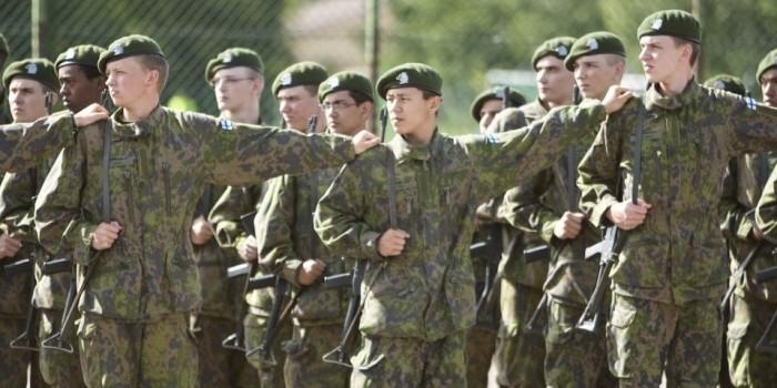 Медведь разогнал три тысячи финских солдат исорвал учения