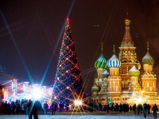 Стала известна стоимость установки основной новогодней ёлки вКремле