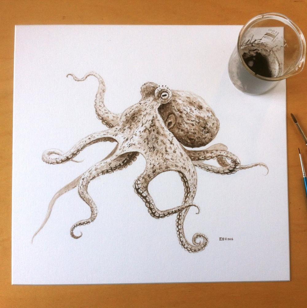 Image of the completed octopus ink drawing. Photo by Esther van Hulsen Dutch wildlife artist Esther