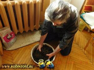 Почвогрунты на основе компостов