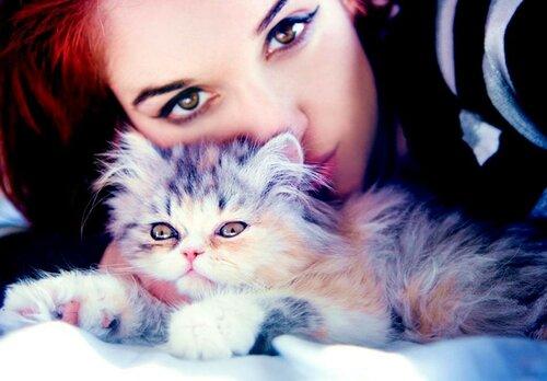 Котики, кошечки, котятки - с праздником !!!  Сегодня  всемирный день кошек !!!