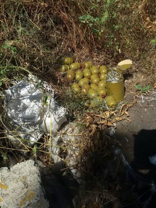 СБУ обнаружила тайник с гранатами РГД-5 в зоне АТО. ФОТО