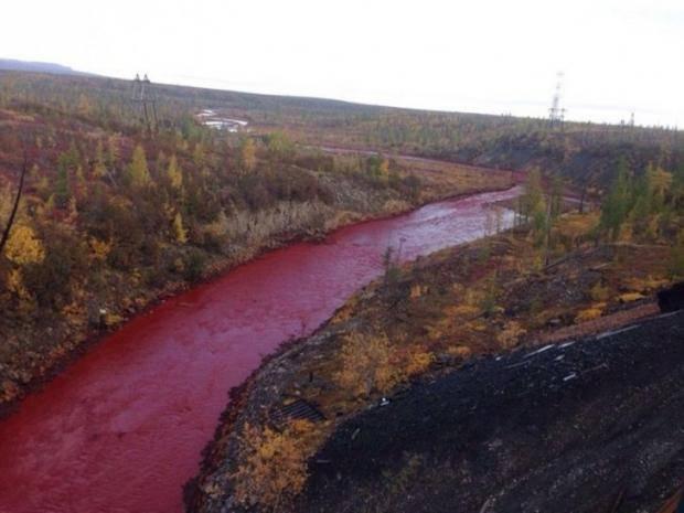 """""""Казнь египетская?"""": Россией текут """"кровавые реки"""" (фото, видео)"""