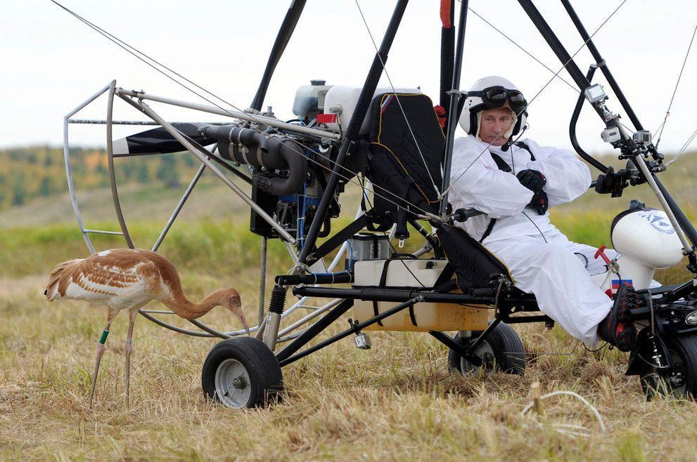 10. Путин и птички. Путин направляет стерхов на зимовку, 5 сентября 2012 года.