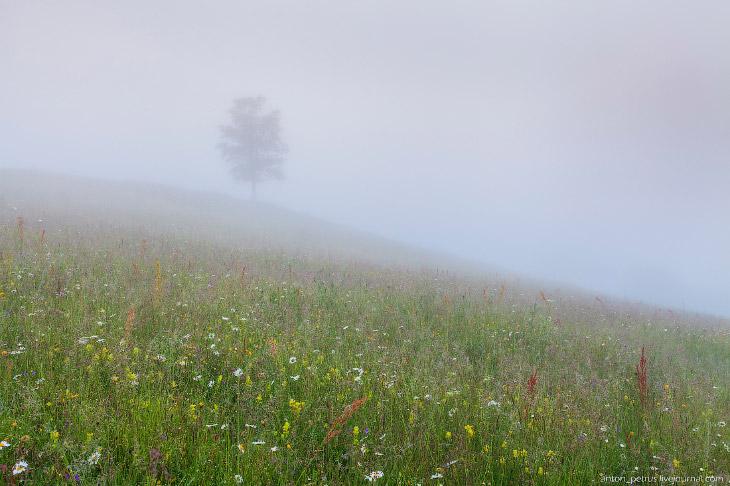 2. Пока поднялись над туманом — сошло семь потов. Зато вид открывался потрясающий — солнце только на
