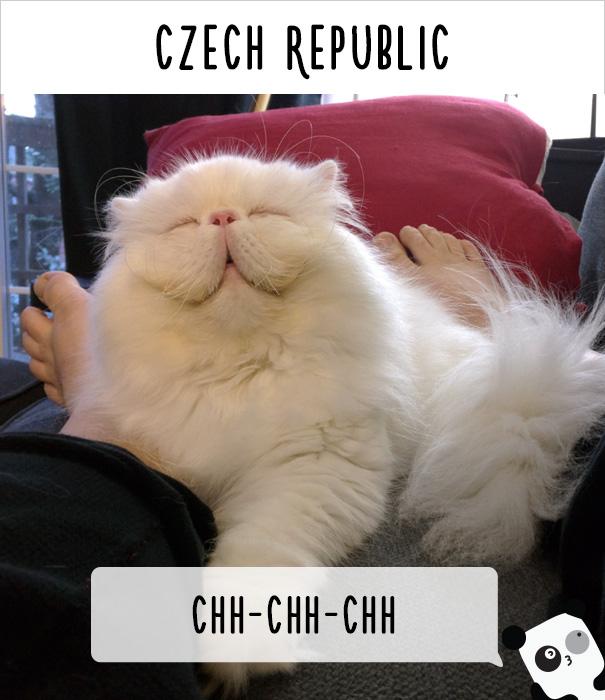 Чехия — чи-чи-чи.