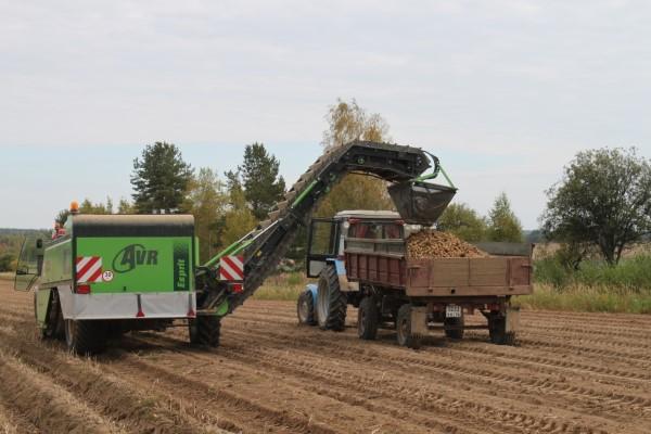 ВУкраине намолочено 5 млн тонн подсолнечника