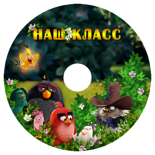 angry_birds_disk.png