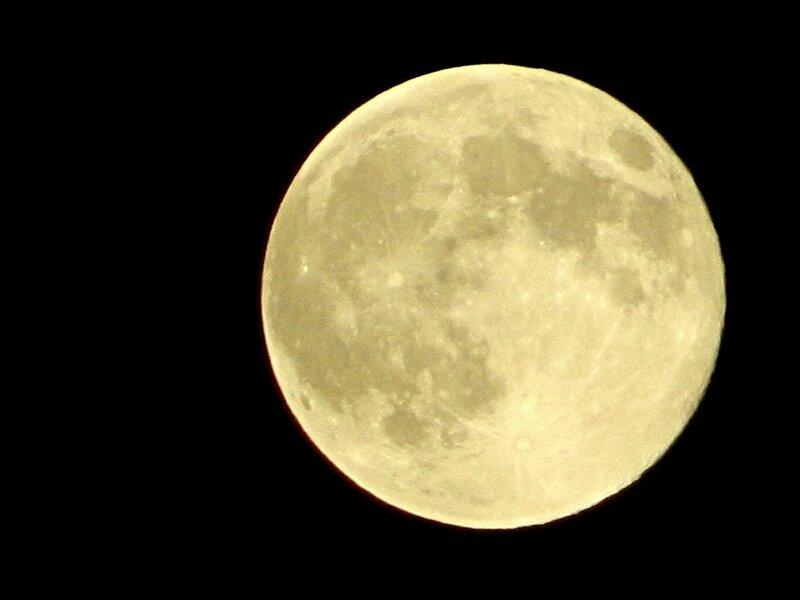 Луна в Алупке.