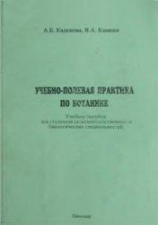 Книга Учебно-полевая практика по ботанике