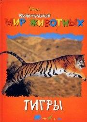 Удивительный мир животных. Тигры