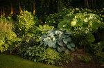 распечатать дизайнерский сад марины соколовой фото годы, творческое