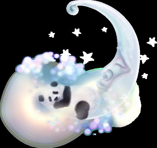 NLD Moon & Panda.png