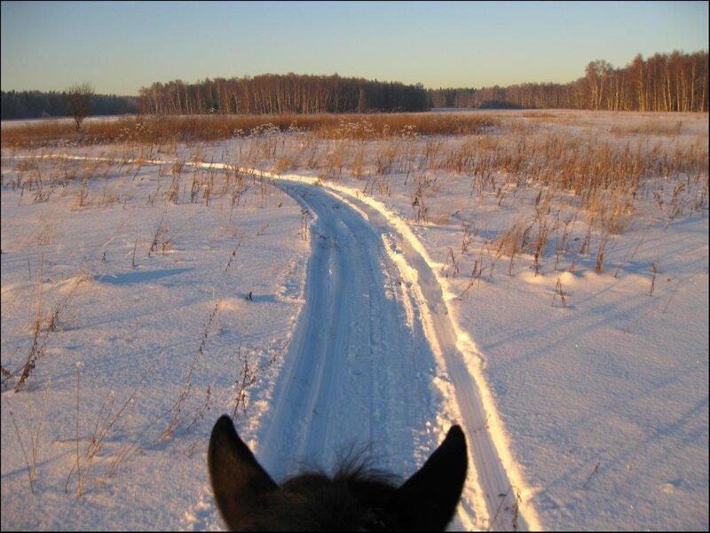 Снегоходная дорожка