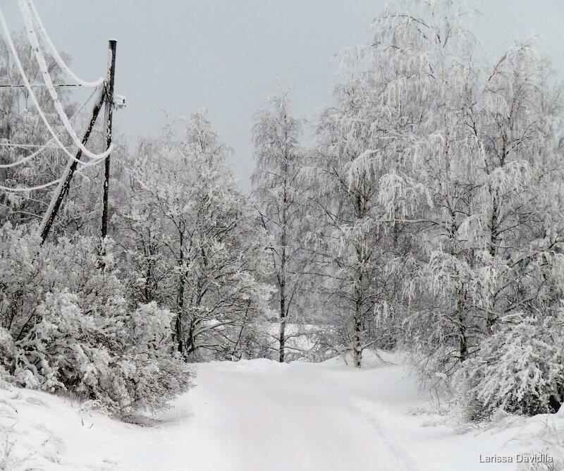 Зимний пейзаж с проводами.