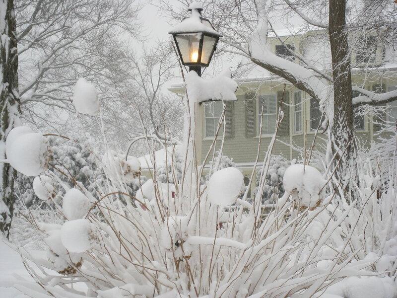 Снежные кружева