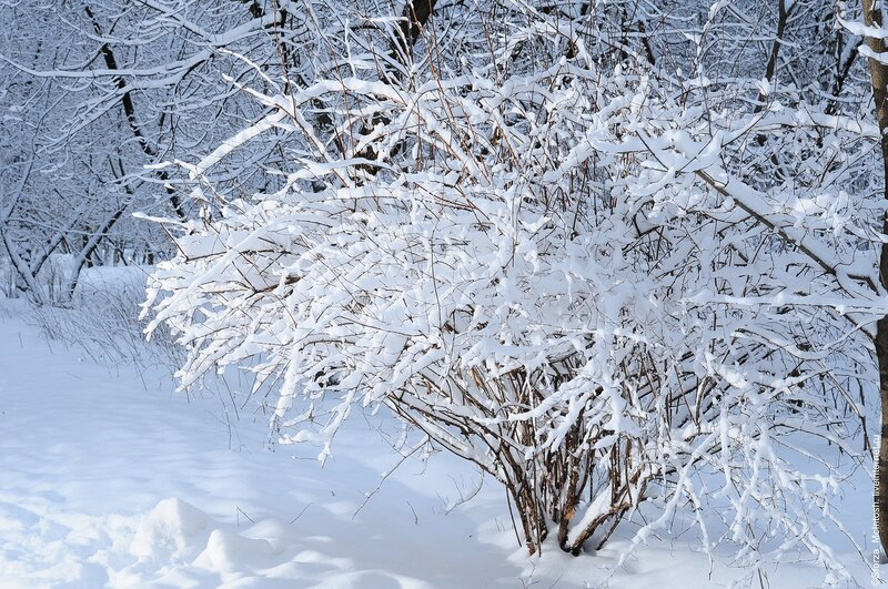 Погода в новороссийске краснодарского края на 5 дней