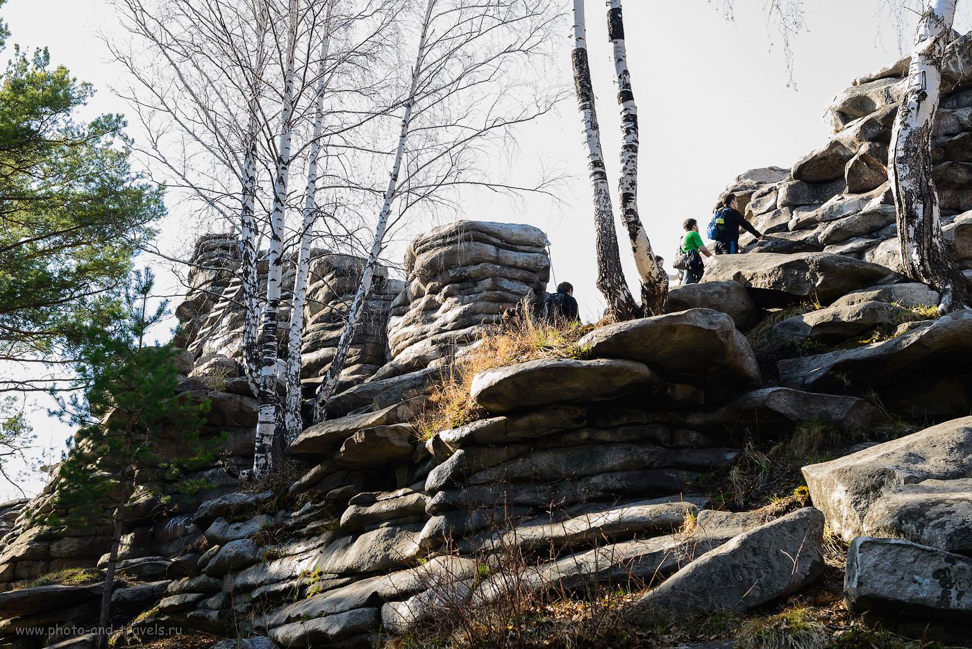 13. Лестница на скалы Чертово городище - слева за березой. (1000, 48, 8.0, 1/100)