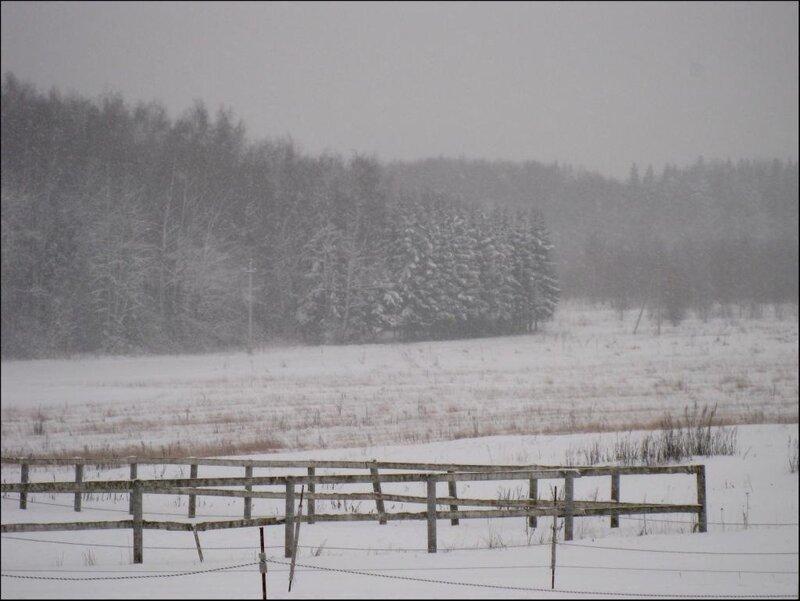 Снегопад в Славино