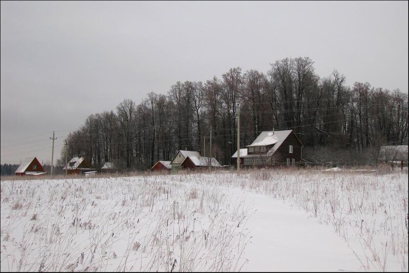 Старинный парк в селе Морозово