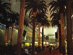 Эмираты.Дубай.Аэровокзал