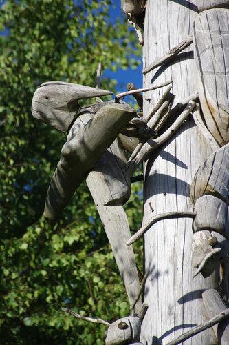 Дятлы против жуков