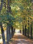 Осень-46.jpg