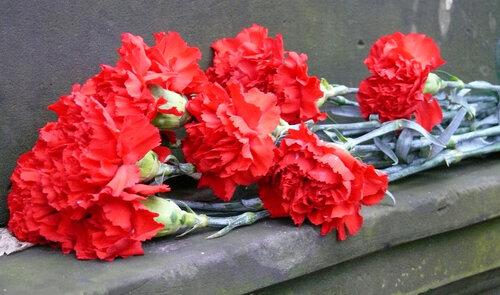 Штучні вінки VS живі квіти: уманчани прихильно ставляться до заміни пластикових квітів в поминальні дні