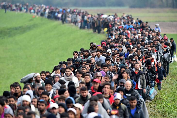 Мигранты стройною толпой… Часть 2 (20 фото)
