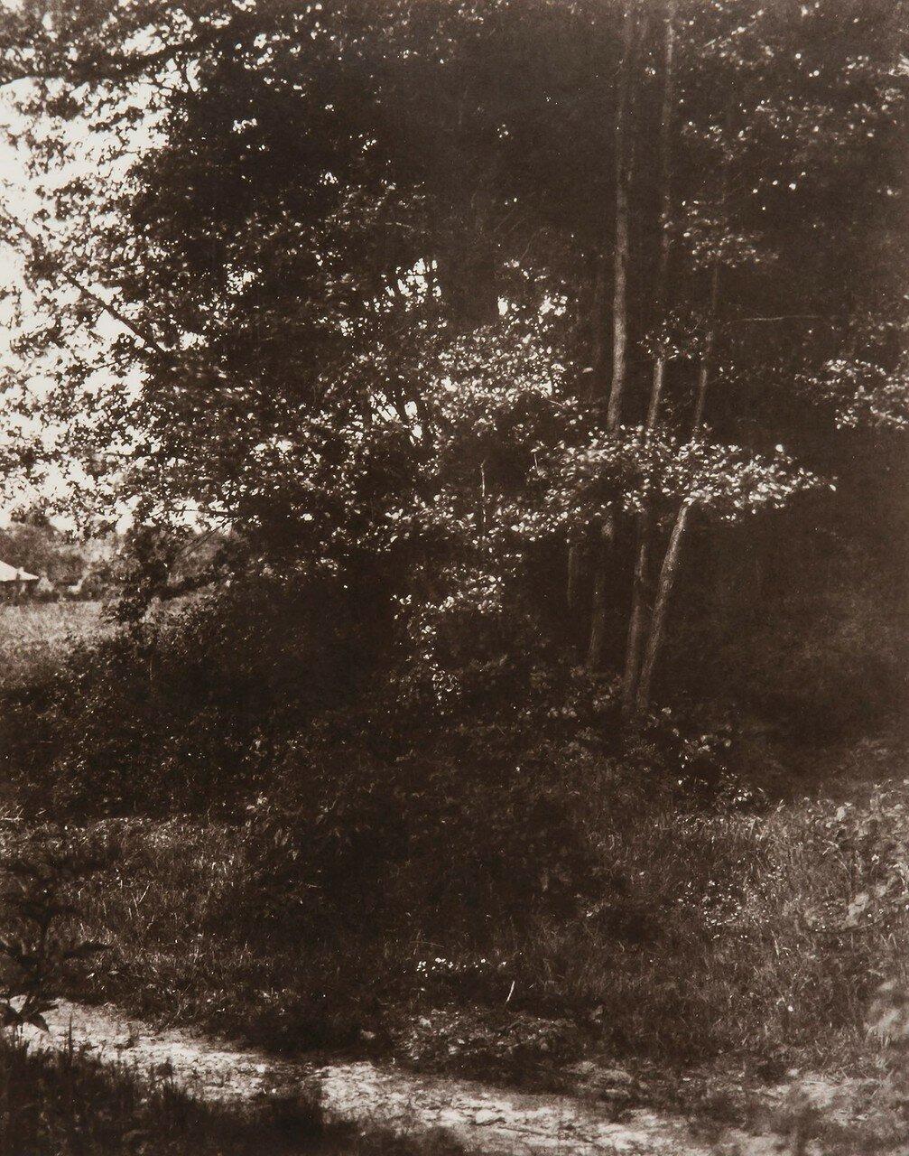 1850. В парижском пригороде