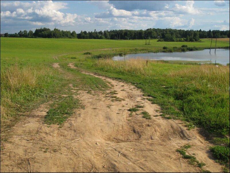 Летнее поле и пруд