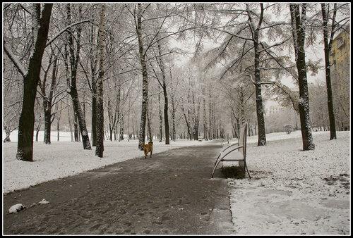 Снова падает снег, снова тает, снова слякоть