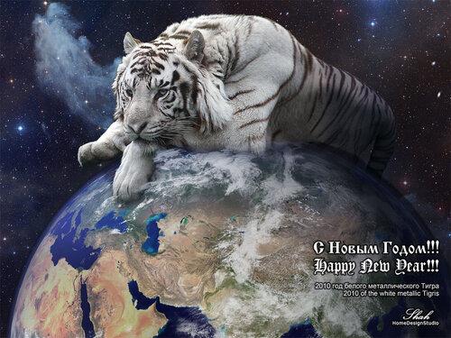 Белый Тигр - white Tigris