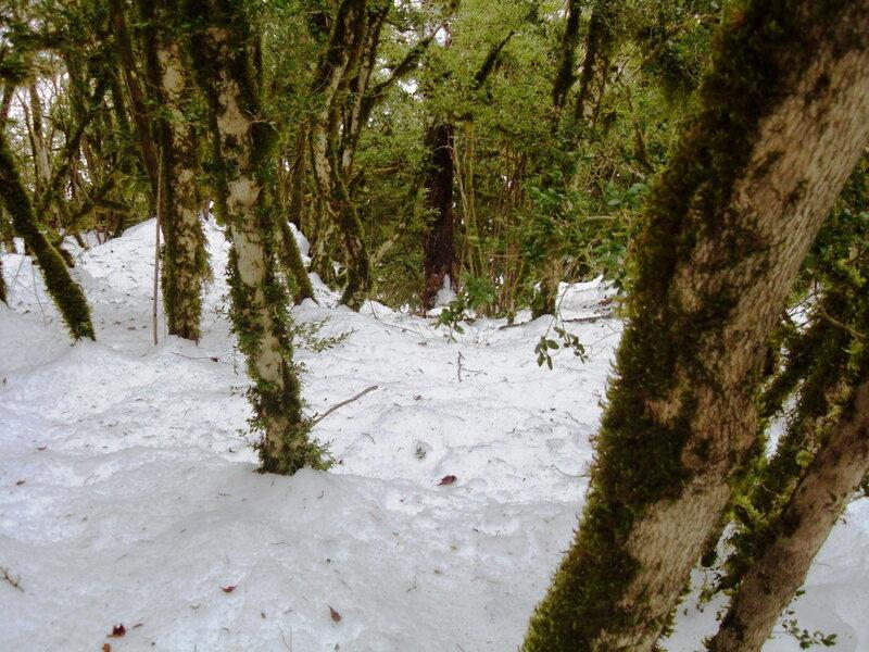 Снег ... 001. Гуамское ущелье (86).jpg
