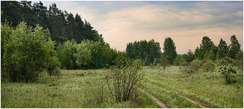 Природа. Фотографии летних видов. Фотограф Кузьмин